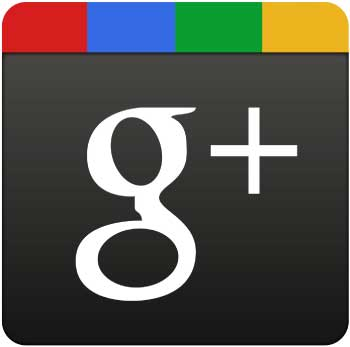 What is Google+ Local for Business